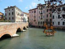 Camic e Coldiretti attive nella promozione dei vini di Treviso